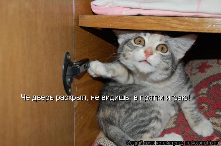 Котоматрица: Че дверь раскрыл, не видишь, в прятки играю!