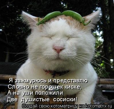Котоматрица: Я зажмурюсь и представлю Словно не горошек киске, А на уши положили Две «душистые» сосиски!