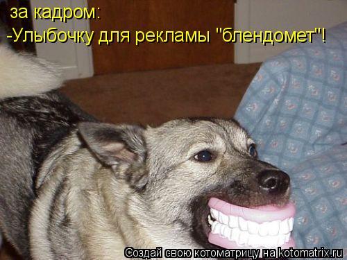 """Котоматрица: за кадром: -Улыбочку для рекламы """"блендомет""""!"""