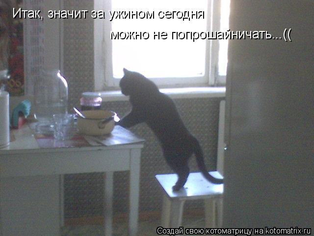 Котоматрица: Итак, значит за ужином сегодня можно не попрошайничать...((
