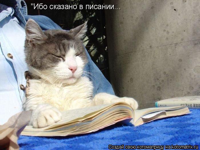 """Котоматрица: """"Ибо сказано в писании..."""