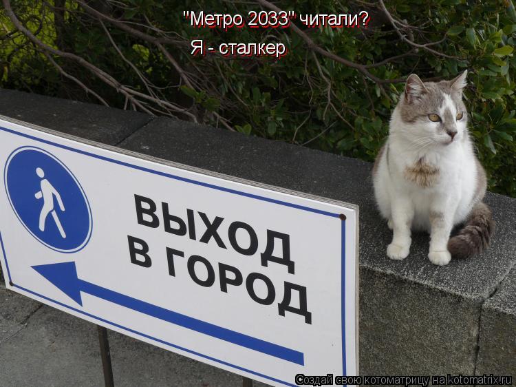 "Котоматрица: ""Метро 2033"" читали? Я - сталкер Я - сталкер ""Метро 2033"" читали?"
