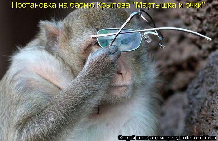 """Котоматрица: Постановка на басню Крылова """"Мартышка и очки"""""""