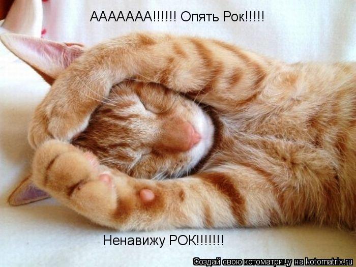 Котоматрица: ААААААА!!!!!! Опять Рок!!!!! Ненавижу РОК!!!!!!!
