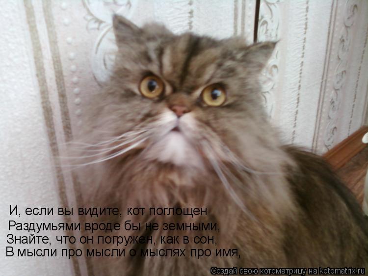Котоматрица: И, если вы видите, кот поглощен Раздумьями вроде бы не земными,  Знайте, что он погружен, как в сон, В мысли про мысли о мыслях про имя,