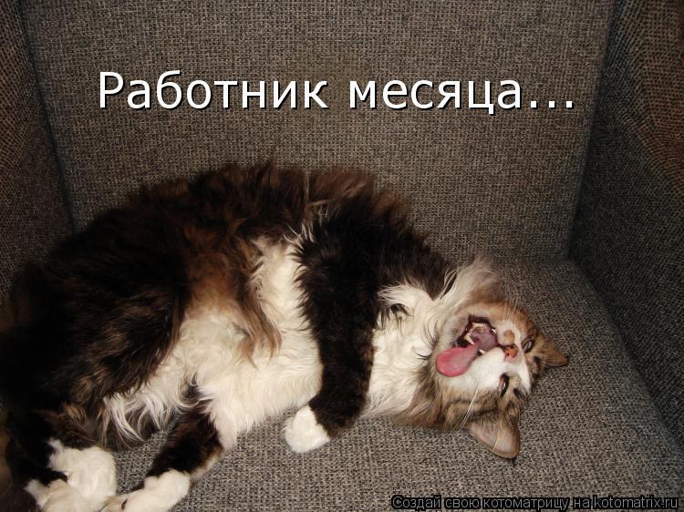 http://kotomatrix.ru/images/lolz/2009/12/24/442146.jpg