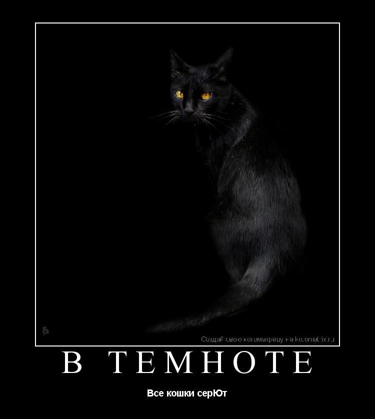Котоматрица: В темноте Все кошки серЮт