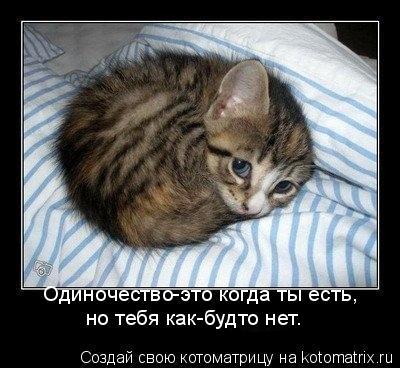 Котоматрица: Одиночество-это когда ты есть, но тебя как-будто нет.