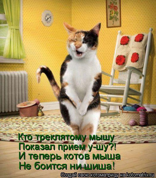 Котоматрица: Кто треклятому мышу Показал прием у-шу?! И теперь котов мыша Не боится ни шиша!