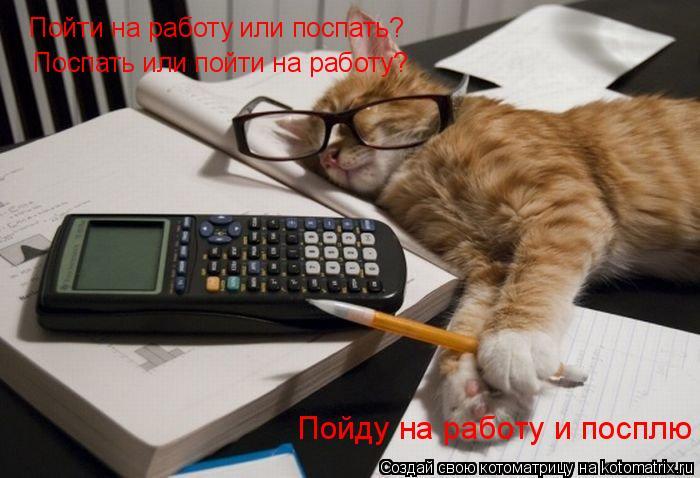 Котоматрица: Пойти на работу или поспать?  Поспать или пойти на работу?  Пойду на работу и посплю