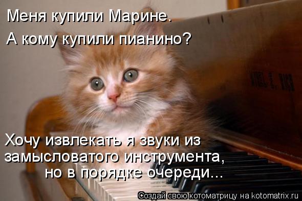 Котоматрица: Меня купили Марине. А кому купили пианино? Хочу извлекать я звуки из  замысловатого инструмента, но в порядке очереди...