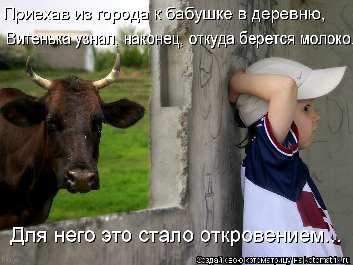 Котоматрица: Для него это стало откровением... Приехав из города к бабушке в деревню,  Витенька узнал, наконец, откуда берется молоко.