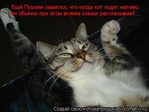 Котоматрица: Ещё Пушкин заметил, что когда кот ходит налево,  он обычно при этом всякие сказки рассказывает....