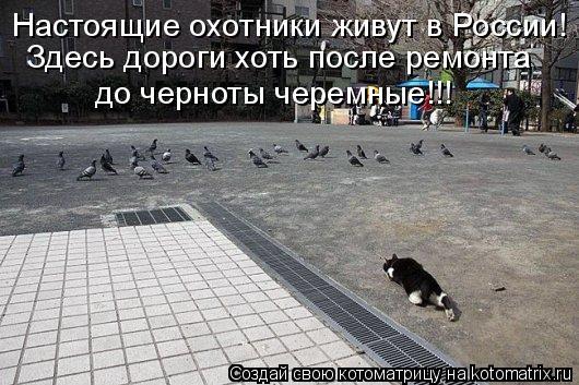 Котоматрица: Настоящие охотники живут в России! Здесь дороги хоть после ремонта до черноты черемные!!!