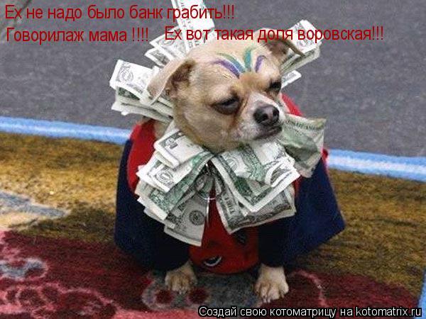 Котоматрица: Ех не надо было банк грабить!!! Говорилаж мама !!!! Ех вот такая доля воровская!!!