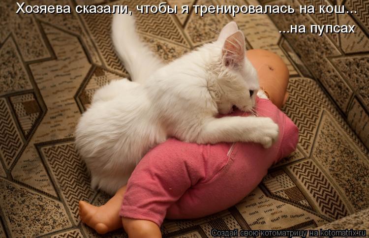 Котоматрица: Хозяева сказали, чтобы я тренировалась на кош... ...на пупсах