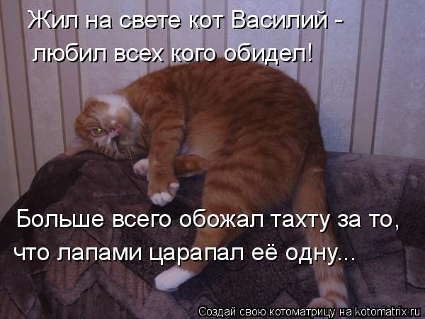 Котоматрица: Жил на свете кот Василий - любил всех кого обидел! Больше всего обожал тахту за то, что лапами царапал её одну...