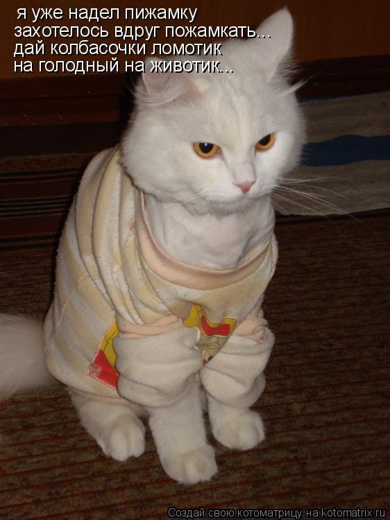 Котоматрица: я уже надел пижамку захотелось вдруг пожамкать... дай колбасочки ломотик на голодный на животик...