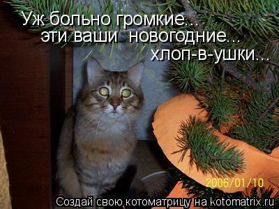 Котоматрица: Уж больно громкие... хлоп-в-ушки... эти ваши  новогодние...