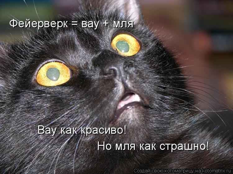 Котоматрица: Фейерверк = вау + мля Вау как красиво! Но мля как страшно!