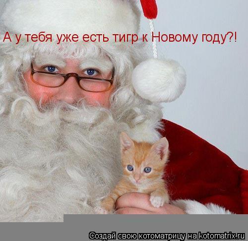 Котоматрица: А у тебя уже есть тигр к Новому году?!