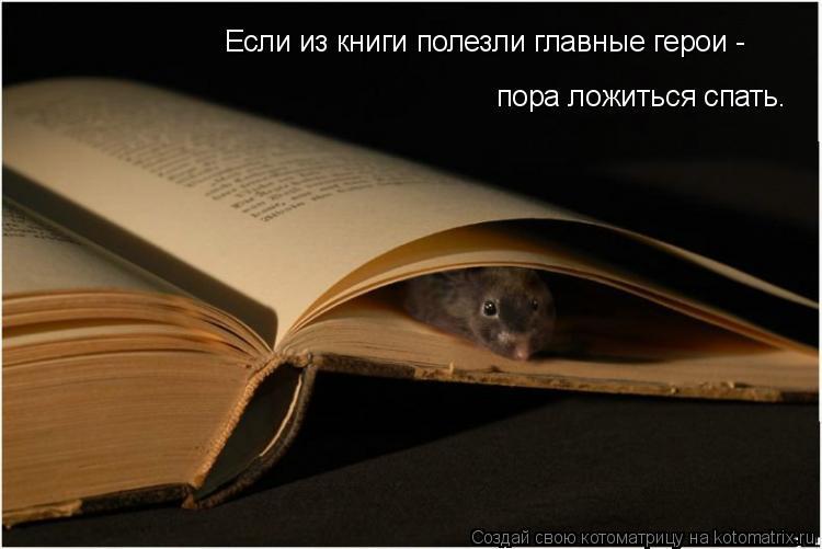 Котоматрица: Если из книги полезли главные герои -  пора ложиться спать.