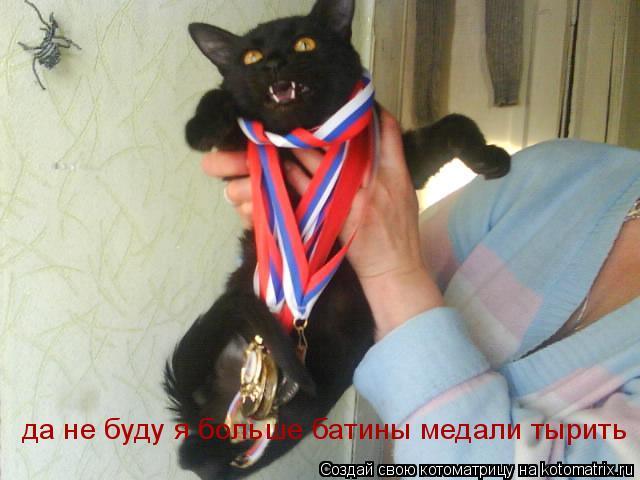 Котоматрица: да не буду я больше батины медали тырить