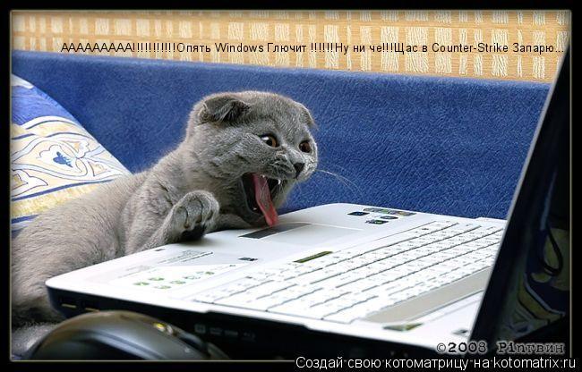 Котоматрица: ААААААААА!!!!!!!!!!!Опять Windows Глючит !!!!!!Ну ни че!!!Щас в Counter-Strike Запарю...