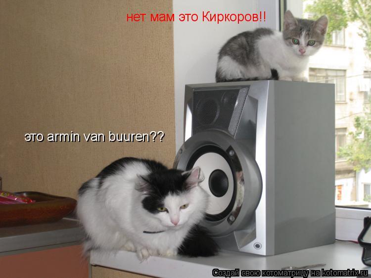 Котоматрица: это armin van buuren?? нет мам это Киркоров!!