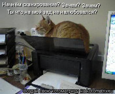 Котоматрица: Начнём сканирование? Зачем? Зачем? Ты что,на мой зад не налюбовался?