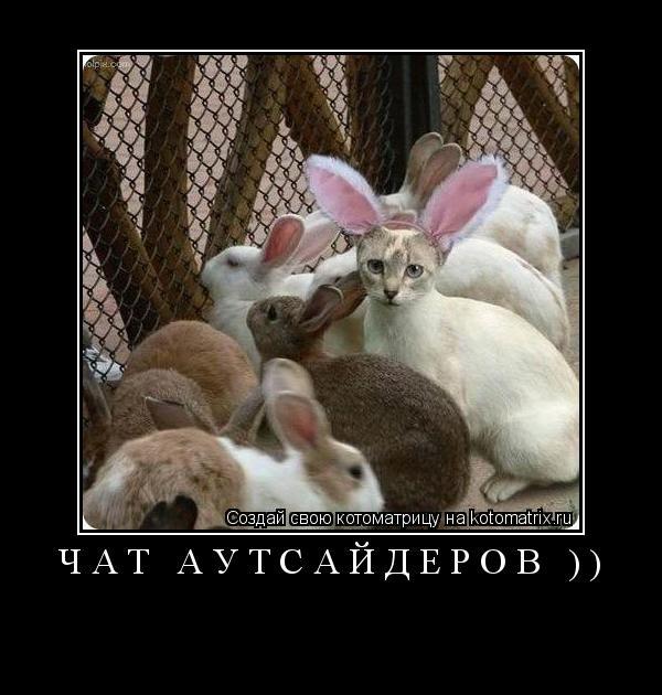Котоматрица: Чат Аутсайдеров ))
