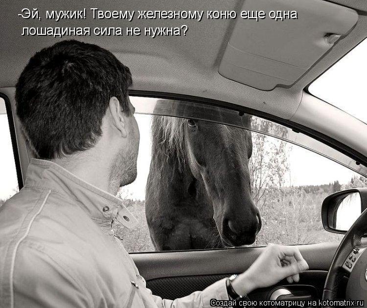Котоматрица: -Эй, мужик! Твоему железному коню еще одна  лошадиная сила не нужна?