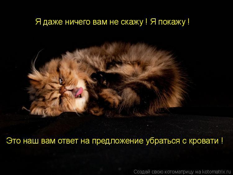 Котоматрица: Я даже ничего вам не скажу ! Я покажу ! Это наш вам ответ на предложение убраться с кровати !