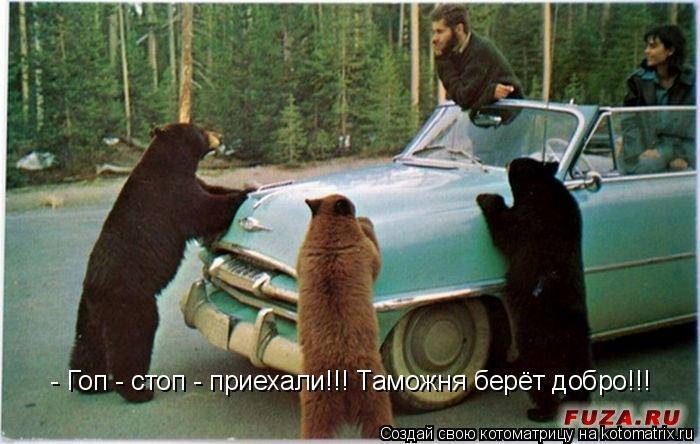 Котоматрица: - Гоп - стоп - приехали!!! Таможня берёт добро!!!