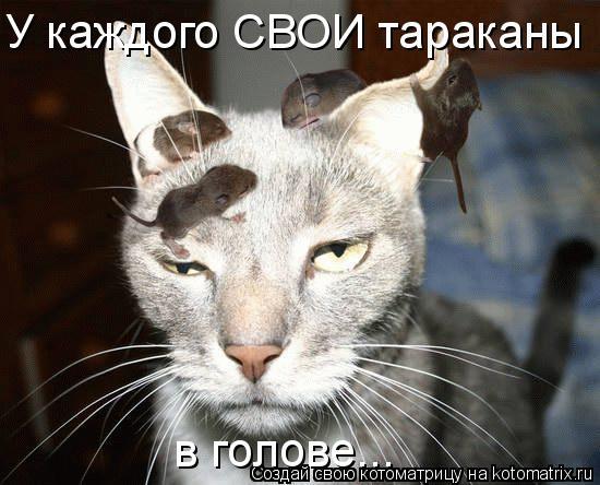 Котоматрица: У каждого СВОИ тараканы  в голове...