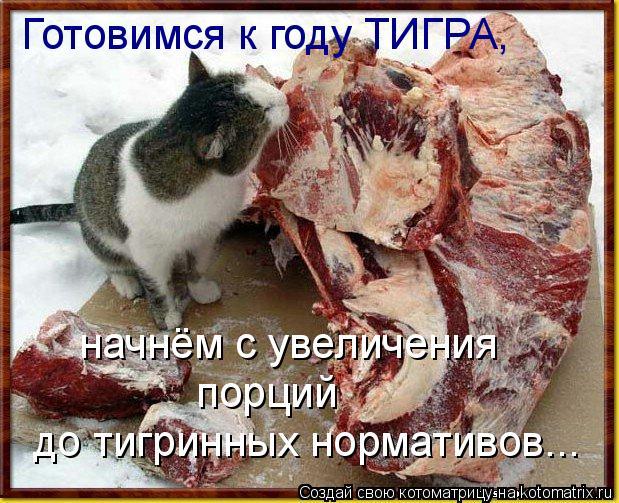 Котоматрица: Готовимся к году ТИГРА, начнём с увеличения  порций до тигринных нормативов...