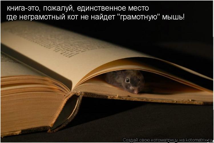 """Котоматрица: книга-это, пожалуй, единственное место где неграмотный кот не найдет """"грамотную"""" мышь!"""