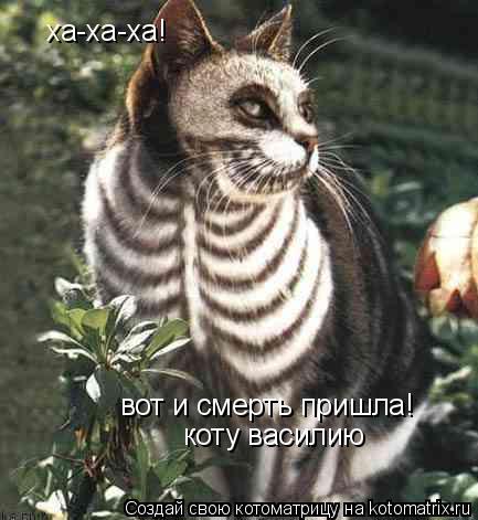 Котоматрица: ха-ха-ха! вот и смерть пришла! коту василию