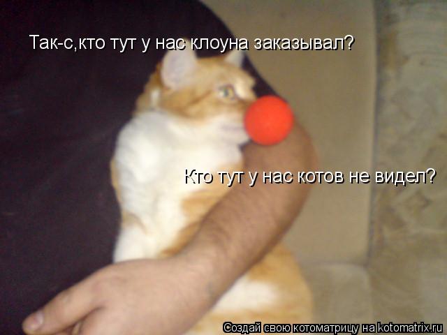 Котоматрица: Так-с,кто тут у нас клоуна заказывал? Кто тут у нас котов не видел?
