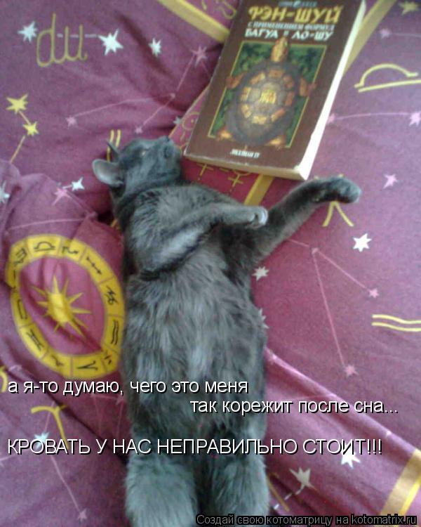 Котоматрица: а я-то думаю, чего это меня  так корежит после сна... КРОВАТЬ У НАС НЕПРАВИЛЬНО СТОИТ!!!