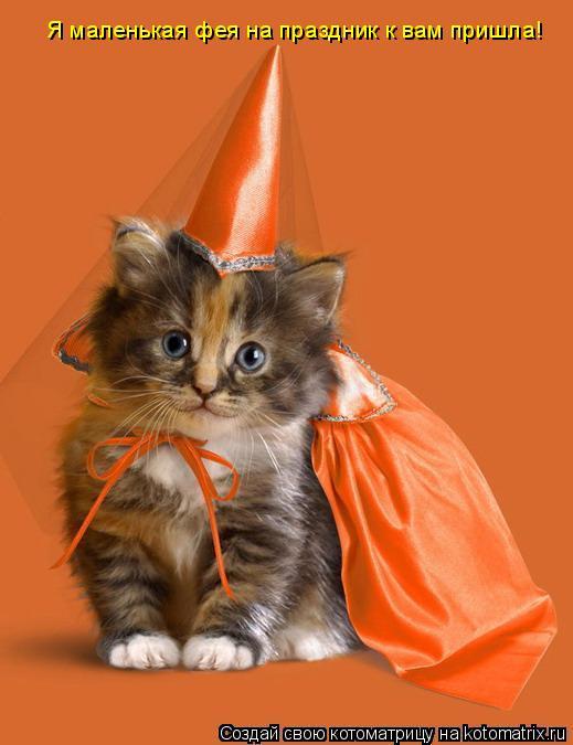 Котоматрица: Я маленькая фея на праздник к вам пришла!