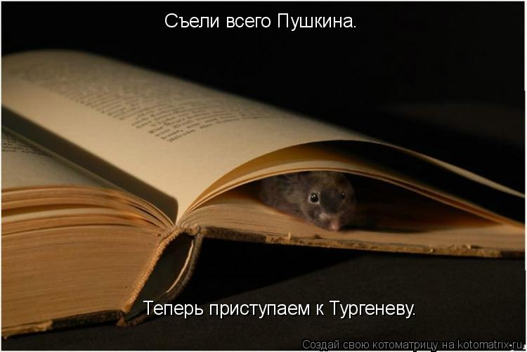 Котоматрица: Съели всего Пушкина. Теперь приступаем к Тургеневу.