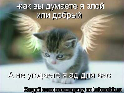 Котоматрица: -как вы думаете я злой или добрый А не угодаете я ад для вас