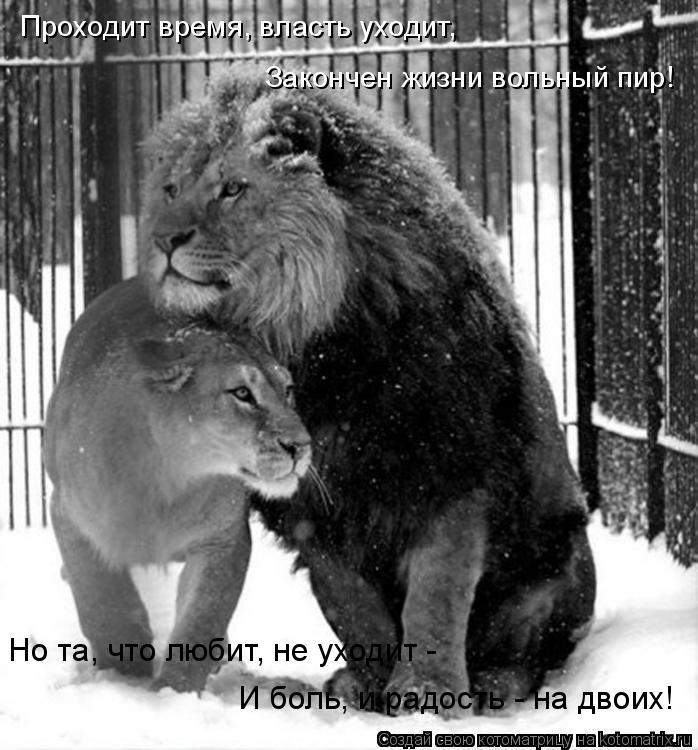 Котоматрица: Проходит время, власть уходит, Но та, что любит, не уходит -  И боль, и радость - на двоих! Закончен жизни вольный пир!