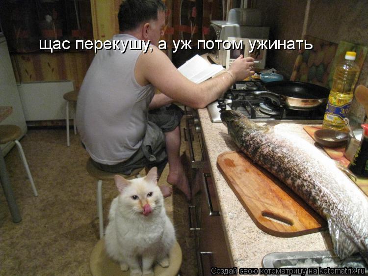 Котоматрица: щас перекушу, а уж потом ужинать