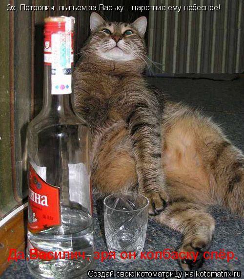 Котоматрица: Эх, Петрович, выпьем за Ваську... царствие ему небесное! Да,Василич, зря он колбаску спёр.