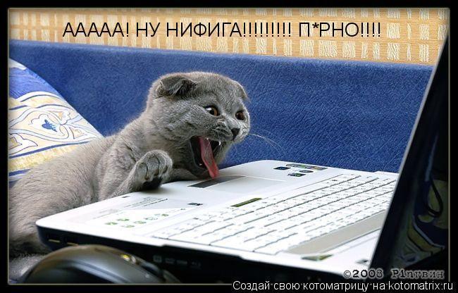 Котоматрица: ААААА! НУ НИФИГА!!!!!!!!! П*РНО!!!!