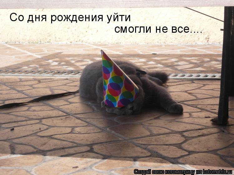 Котоматрица: Со дня рождения уйти смогли не все....