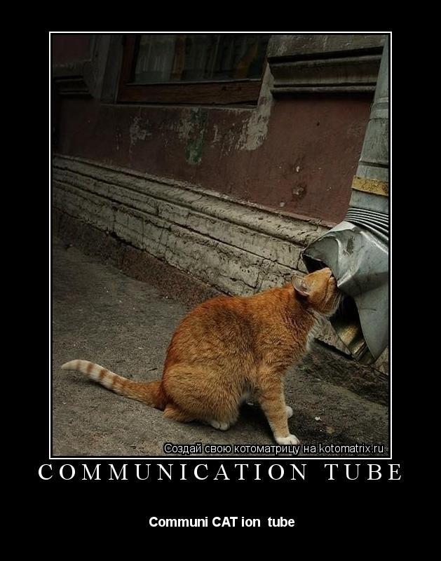 Котоматрица:  СommuniCATion tube  Сommuni CAT ion  tube