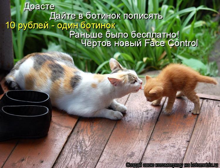 Котоматрица: Драсте Дайте в ботинок пописять 10 рублей - один ботинок Раньше было бесплатно! Чёртов новый Face Control